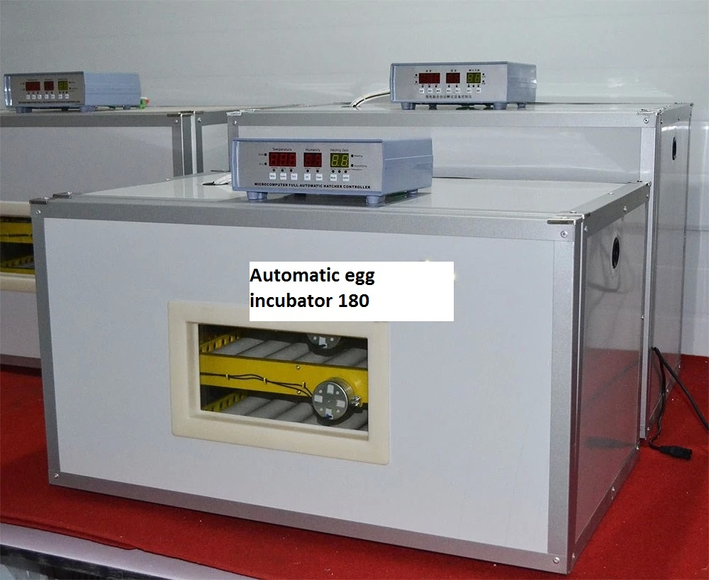Automatic egg incubator 180 eggs